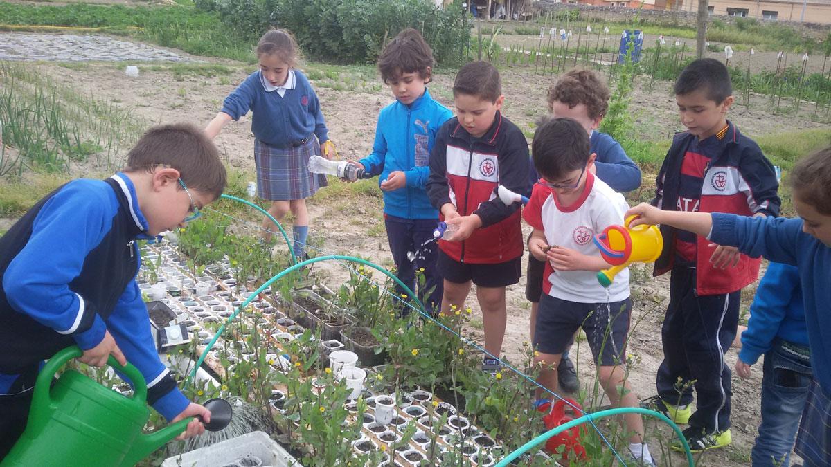 Colegio-Sagrados-Corazones-Miranda-de-Ebro-08