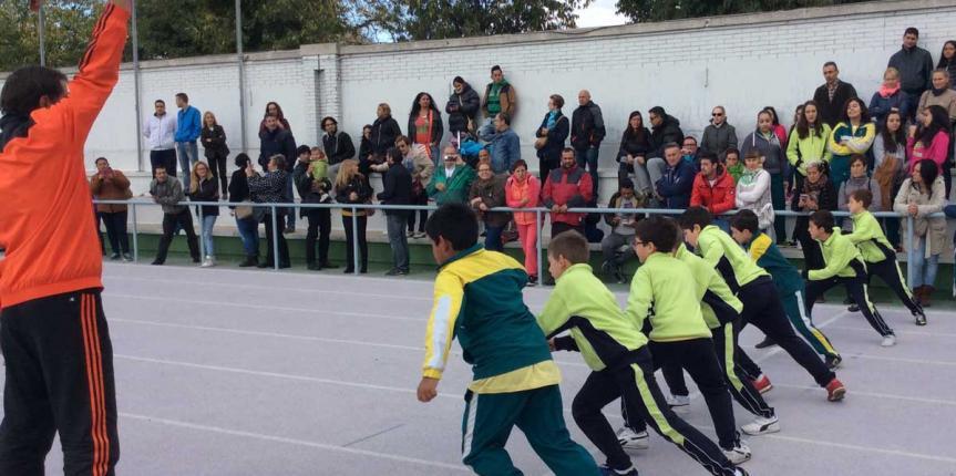Medio millar de niños participan en las Olimpiadas del Colegio Safa Grial (Valladolid)